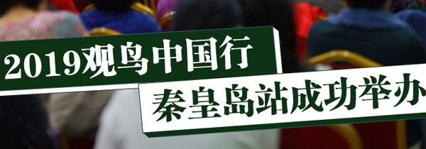 2019观鸟中国行 秦皇岛站成功举办