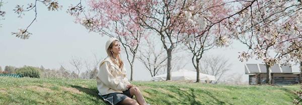 樱花专列已开启,准备好春游了吗?