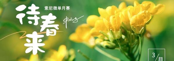 索尼三月月赛主题《待春来》优秀作品