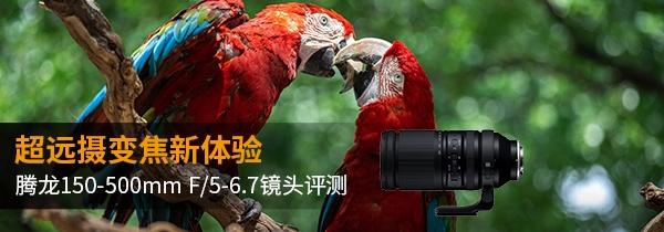 超远摄变焦新体验,腾龙150-500mm F/5-6.7镜头评测