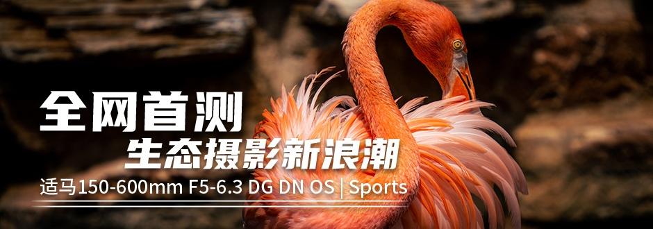 生态摄影新浪潮 适马150-600mm F5-6.3 DG DN OS镜头评测