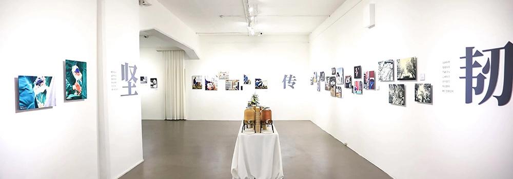 康宁大猩猩玻璃 她们·坚韧传递 主题摄影艺术展北京开幕